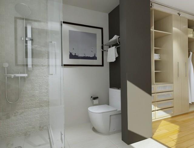 Master Bathroom Closet Ideas