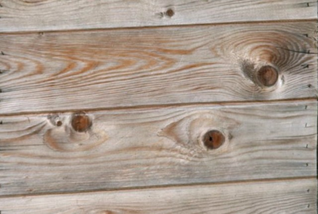Pressure Treated Decking Stain