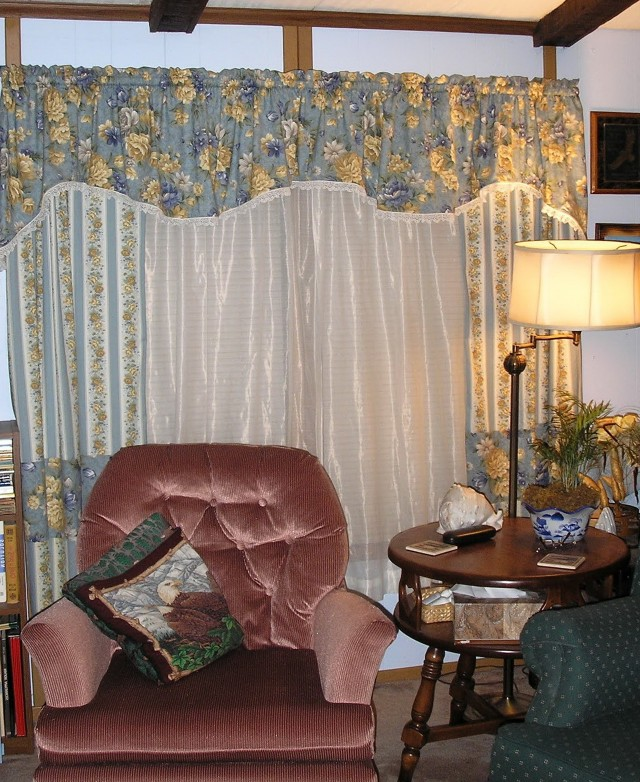 Living Room Double Window Curtains