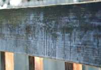 Defy Deck Stain Home Depot