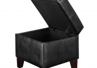 Small Ottoman With Storage