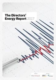 The Directors Energy Report 2017 Cover