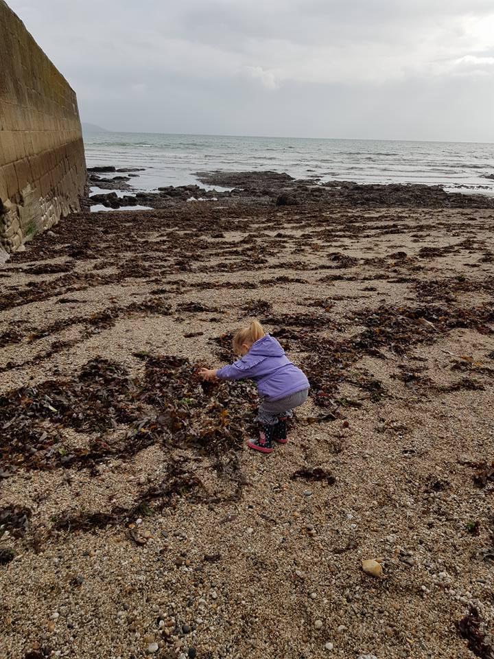 Shaniah wasn't sure on the seaweed