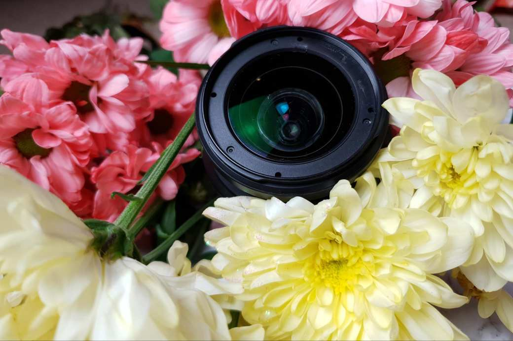 the lens of my camera in some flowers