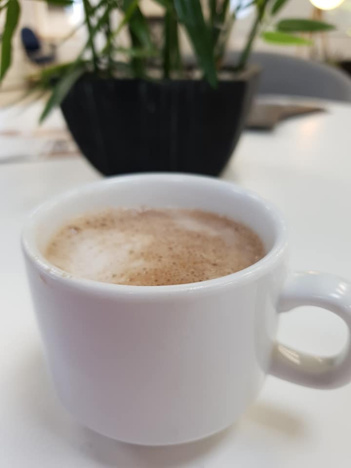 Hot chocolate in front of a house plant