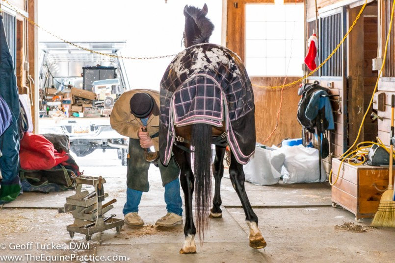 A farrier working on a winter's day.