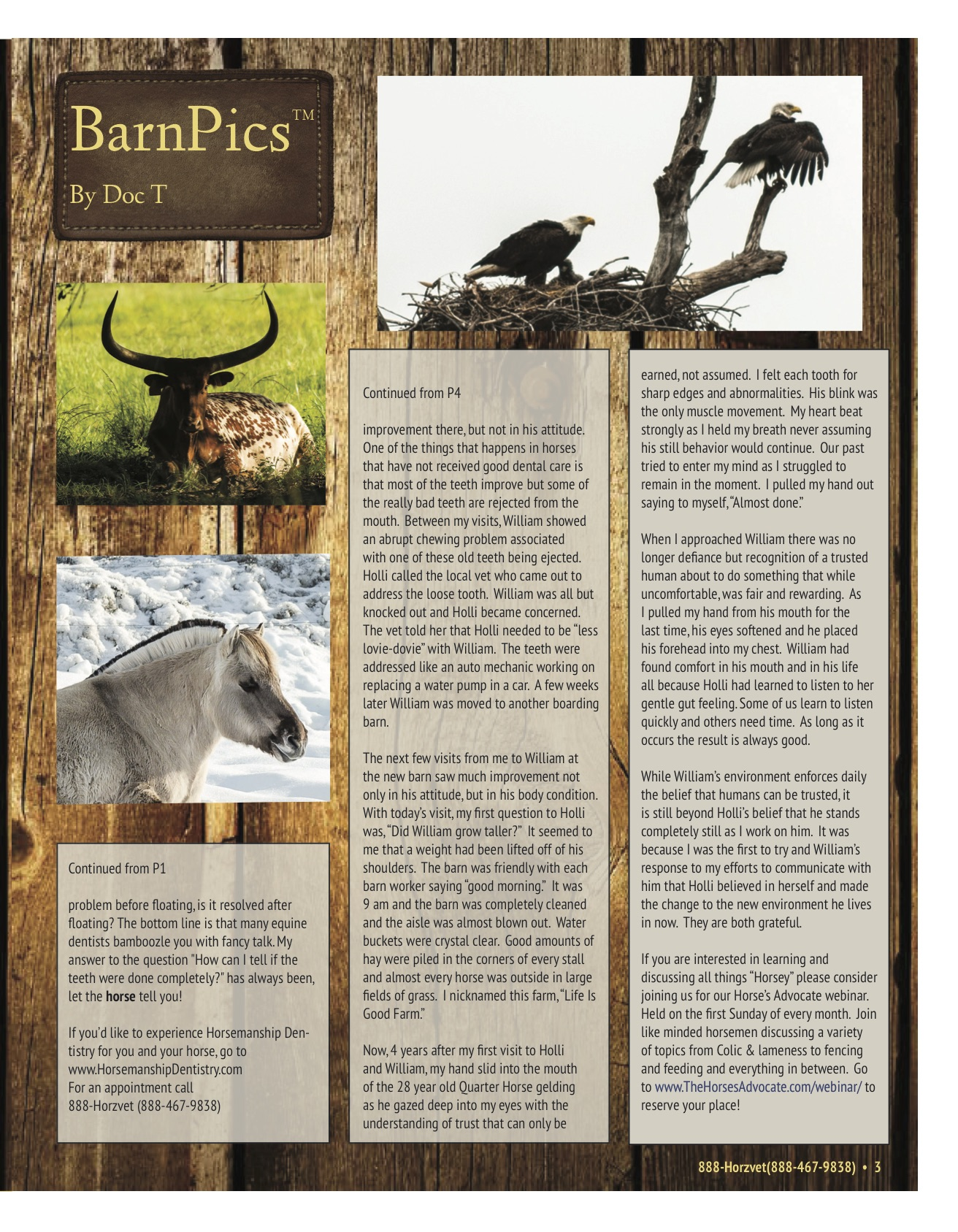 The Equine Practice Rounds™ Vol 1 Issue 1 page 3 of 4