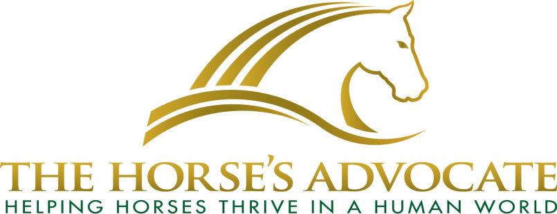 The Equine Practice, Inc – Home of Horsemanship Dentistry