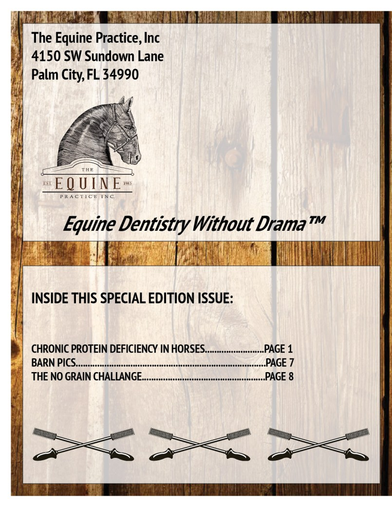 The Equine Practice Rounds™ Vol 1 Issue 3 page 4 of 4