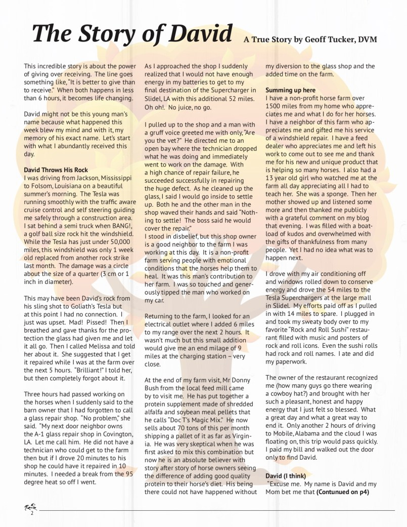 The Equine Practice Inc, The Equine Practice Rounds Vol 2 Issue 1 page 2