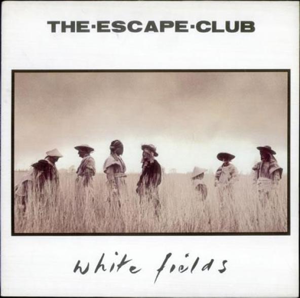 white fields album