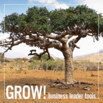 Grow! Young Living Business Tools