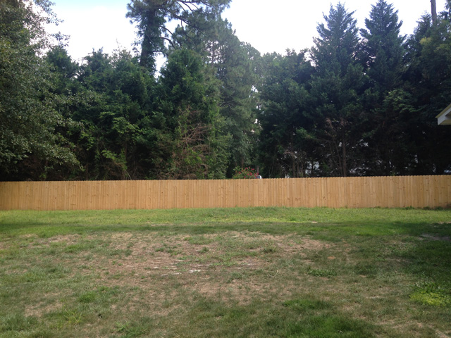 yard right side