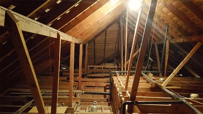 shaniqua-attic-unfinished