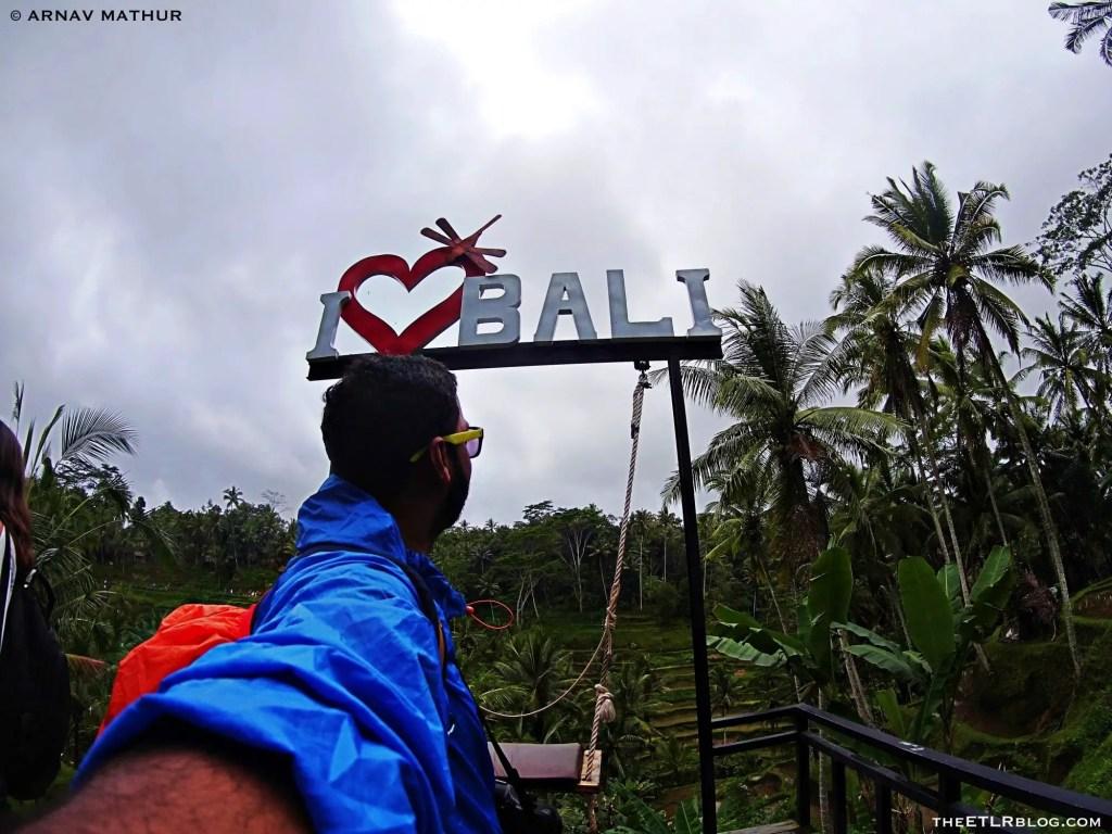 I Love Bali ! tegallalang rice terraces