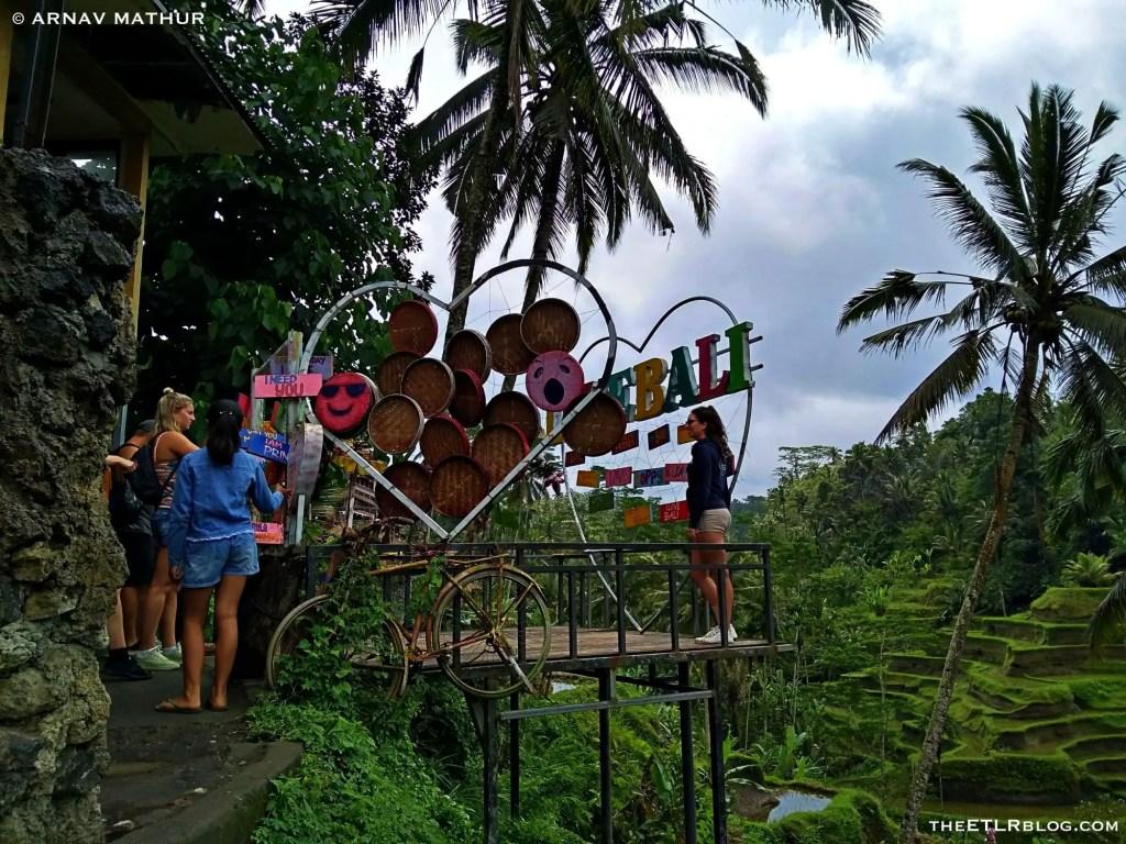 Love Bali tegallalang rice terrace theETLRblog