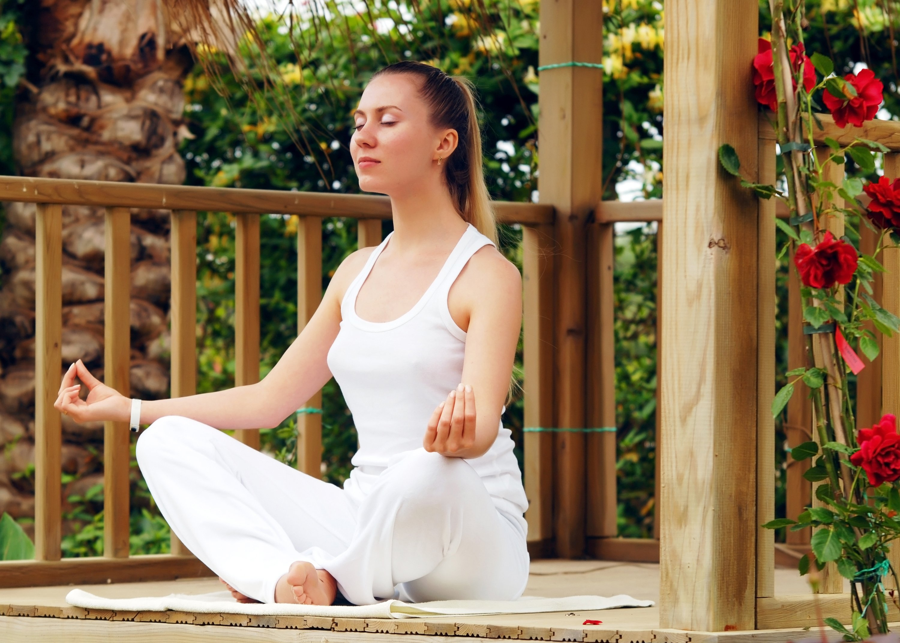 7 Reasons Why Dharamshala Is The Best Place To Learn Yoga