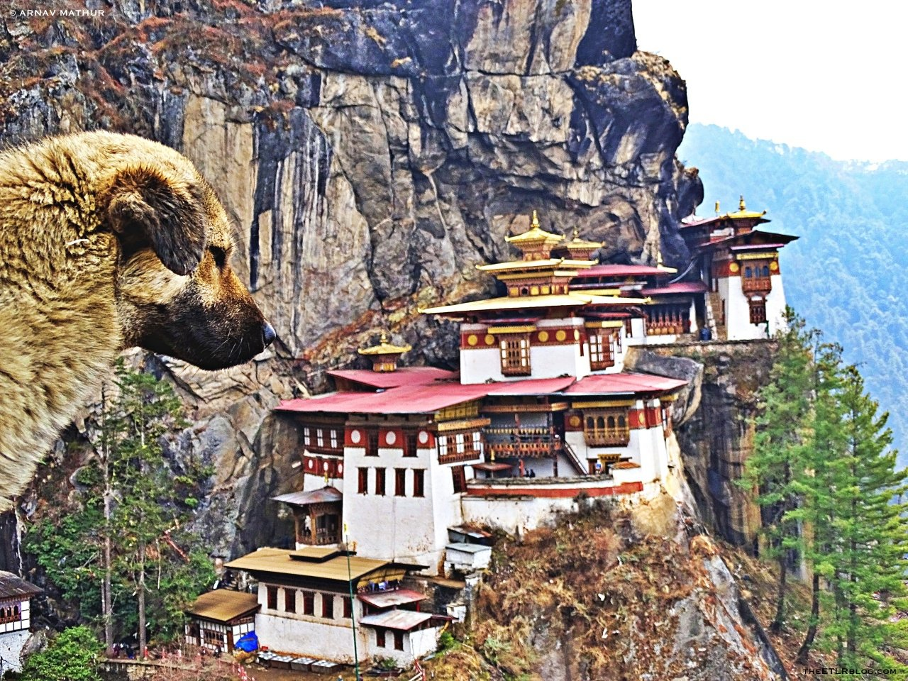 Top 10 Things to Do in Bhutan – The Land of Thundering Dragon
