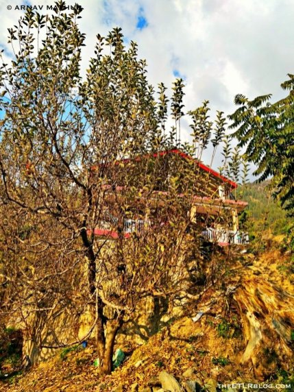 PossiVille - Homestay and Hostel in Halan Village near Manali