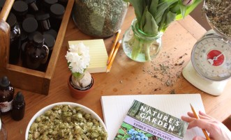Online Course - Herbal Materia Medica