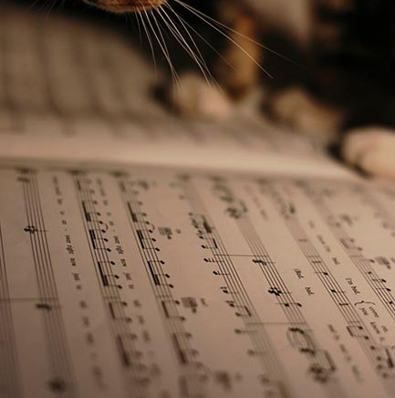 Famous Songs in Slightly Odd Time Signatures – A Guide to