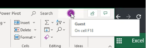 Share Collaborate and Co-Author in Excel
