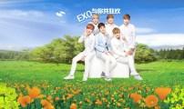 O_NatureRepublic_131107_EXO-M