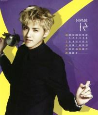 S_Calendar2014_DEC_Kris2