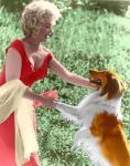 monroe meets lassie