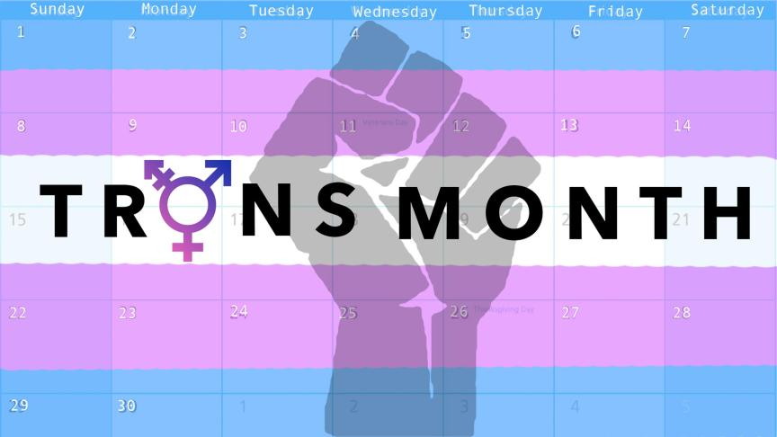recognizing trans awareness month the eyeopener