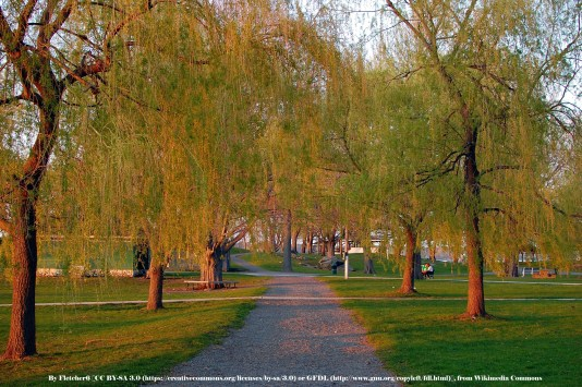 Salem_Willows_Path