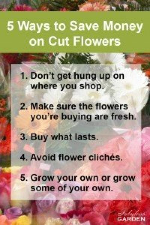 5 ways to save $ on cut flowers