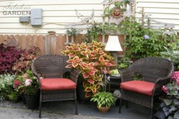 seating arrangement with multiple pots of coleus