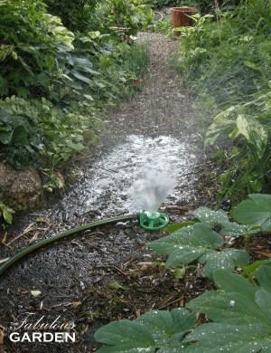 sprinkler in back garden