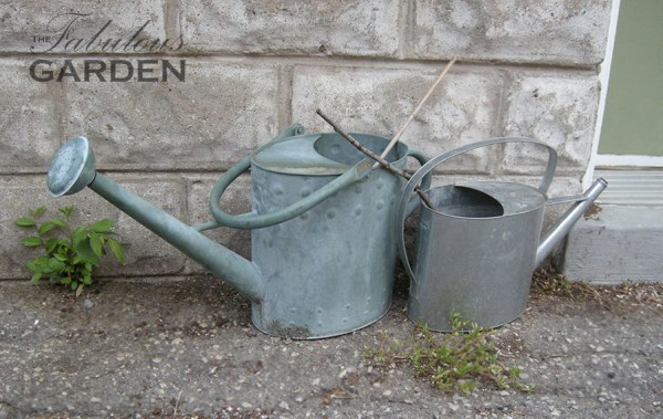 Put sticks in your watering cans to avoid drowning small rodents