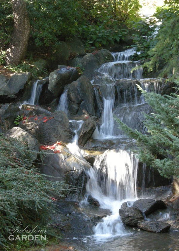 Waterfall with artfully placed maple leaves