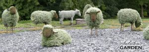 mosaiculture sheep