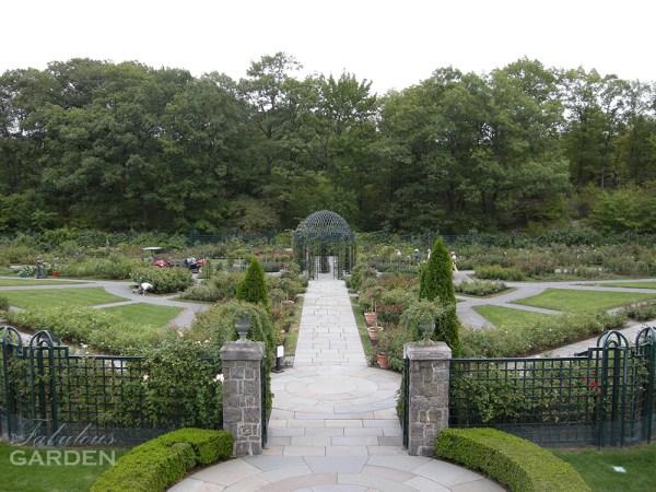 Rose Garden Sept 2010