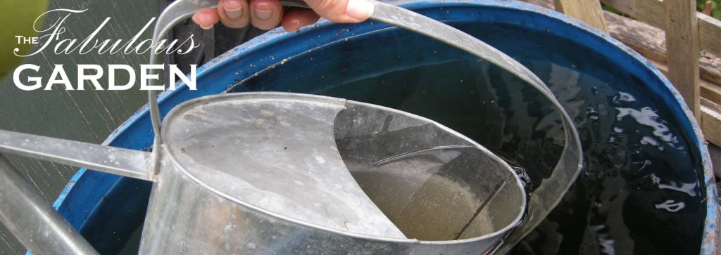 Rain barrels and why every gardener should have one