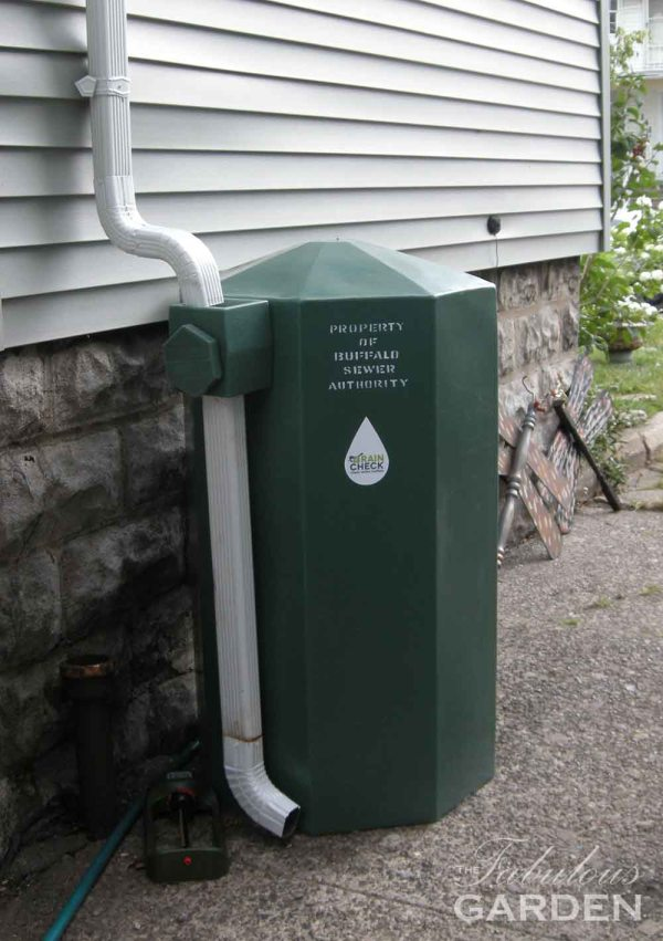 Rain barrel provided by the Buffalo public works