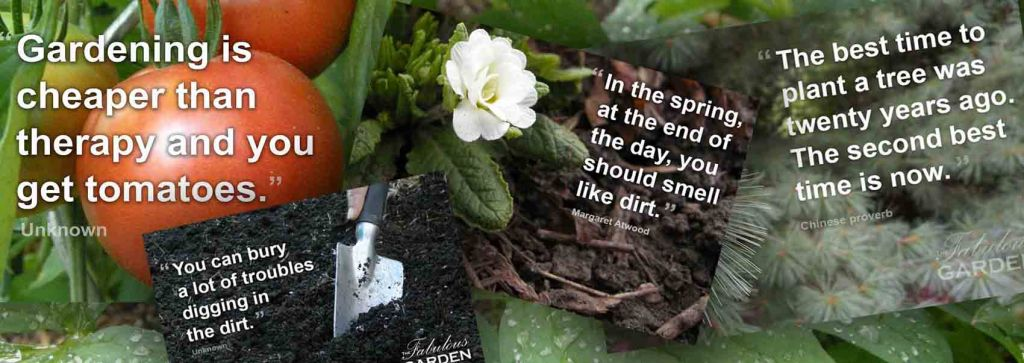 Garden Quotes And Sayings The Fabulous Garden