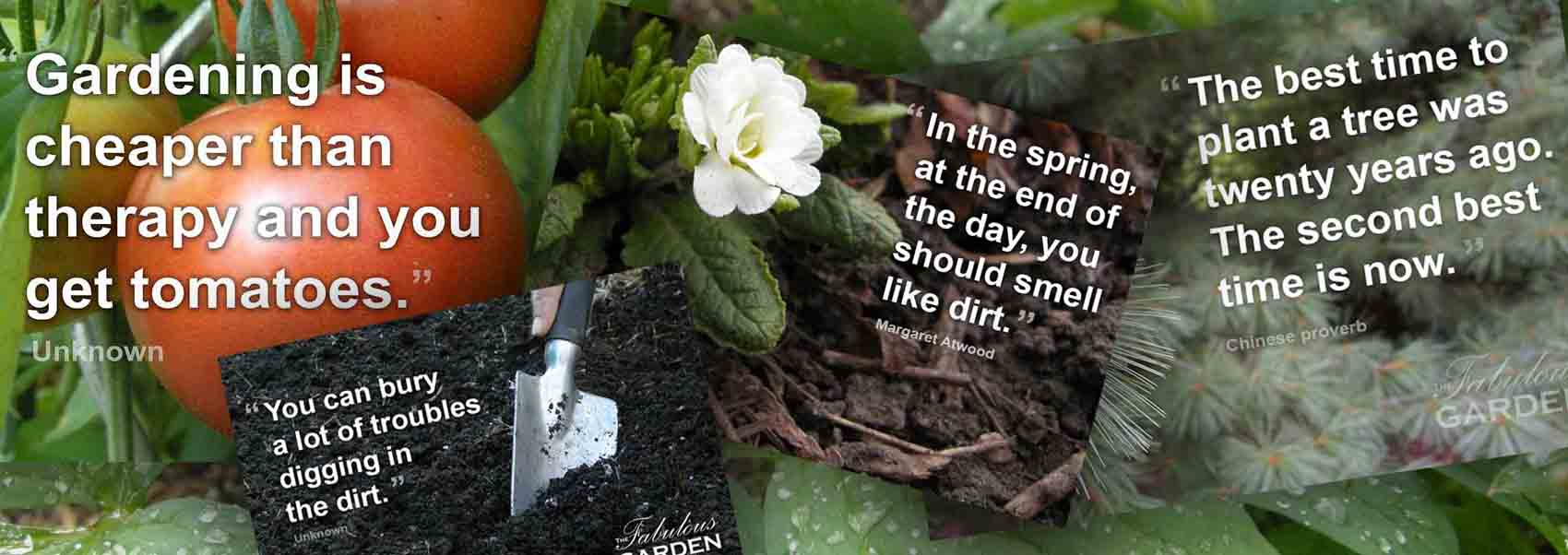 Garden quotes and sayings