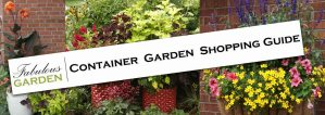 Learn about the Container Garden Shopping Guide