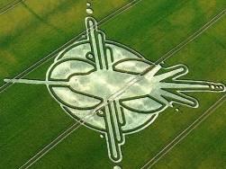 crop circles (266)