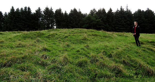 unusual mounds behind the Hellfire Club, Ed is examining them photo by Christa Thompson