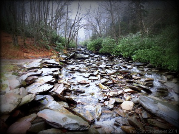 This is one of the many brooks and streams that run through the Great Smoky Mountains National Park.