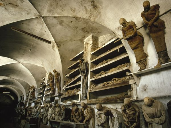 crypt capuchin