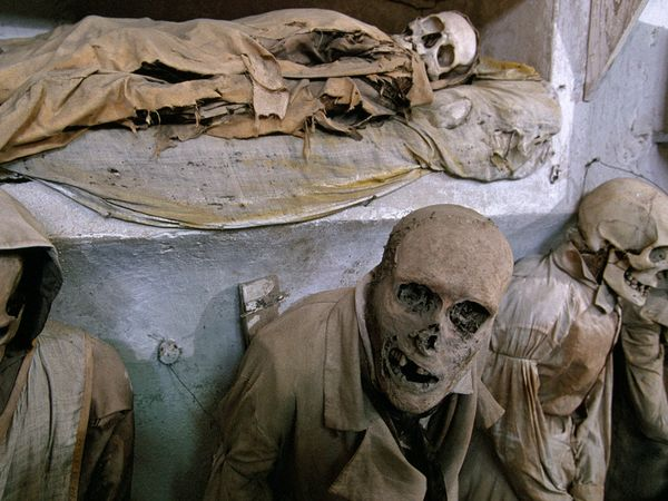 crypt capuchin mummies 2945 600x450 national geographic