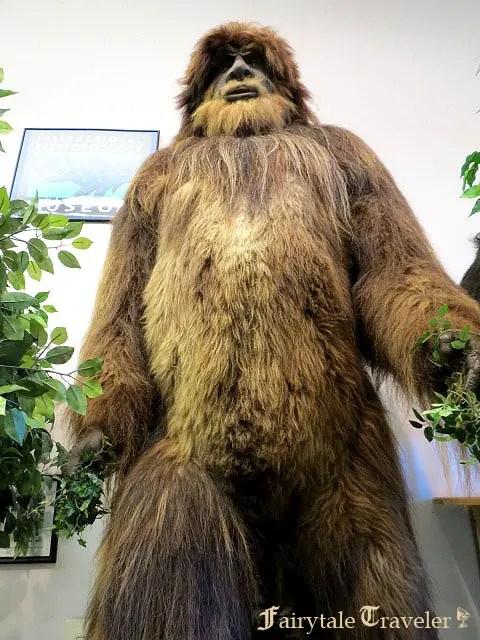 cryptozoology museum, bigfoot