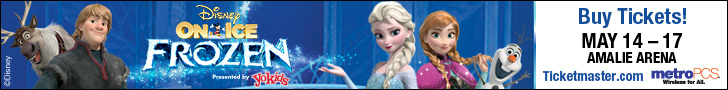 Frozen Web Banner long